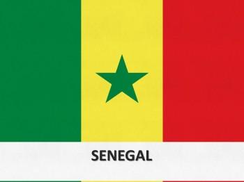 10106-senegal-flag-template-1