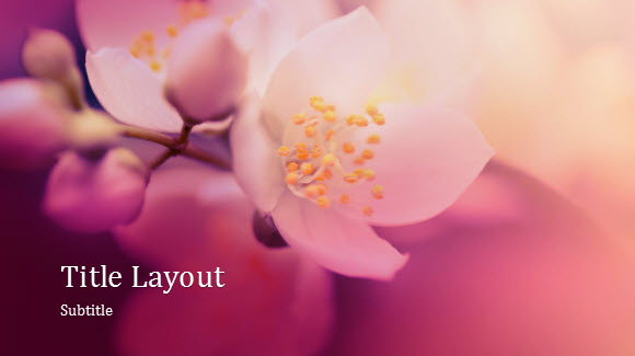 Nature Flower Template For Powerpoint Online  Free Powerpoint Templates