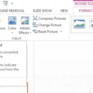 Remove Background from Pictures and Graphics in PowerPoint 2013 4